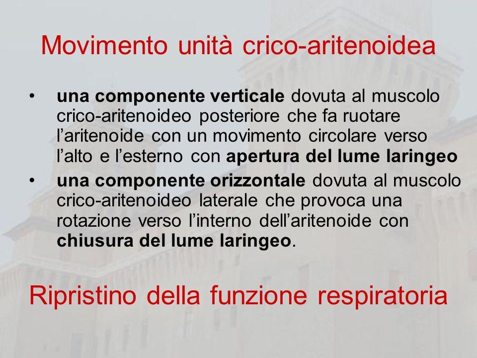 Movimento unità crico-aritenoidea