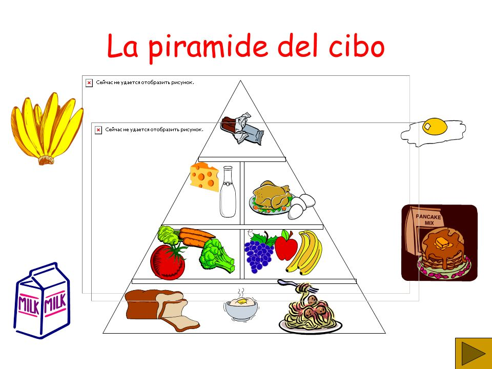 La piramide del cibo