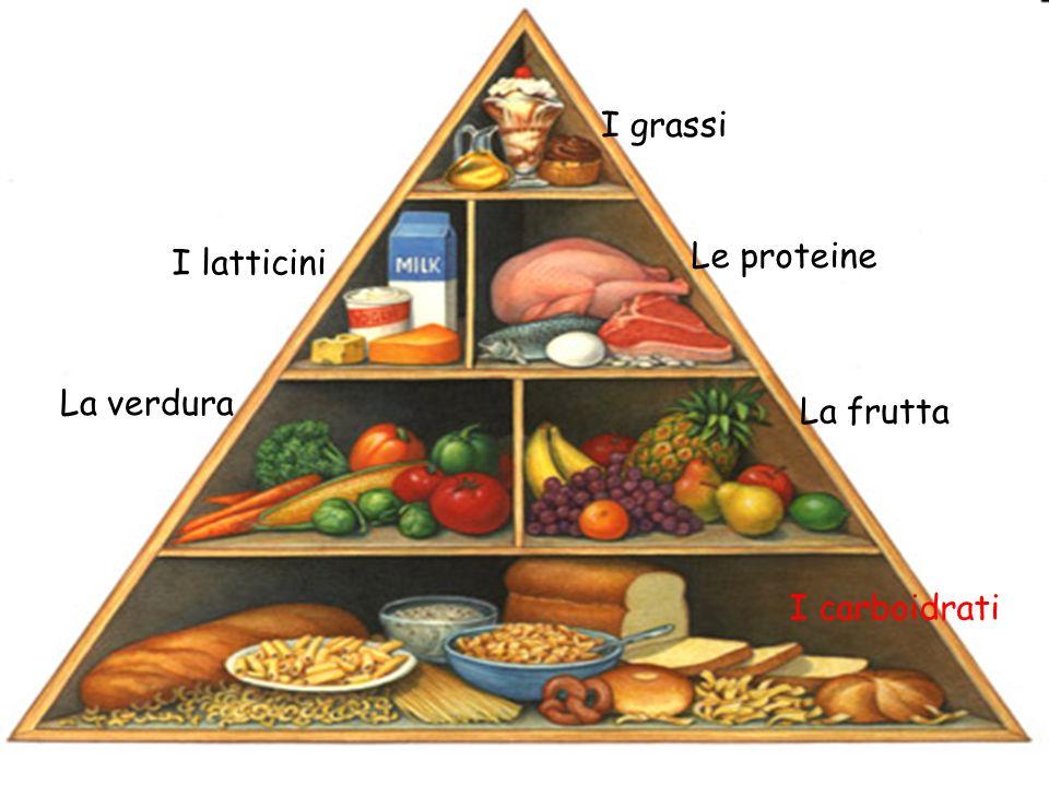 I grassi I latticini Le proteine La verdura La frutta I carboidrati