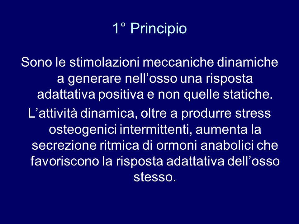 1° Principio Sono le stimolazioni meccaniche dinamiche a generare nell'osso una risposta adattativa positiva e non quelle statiche.