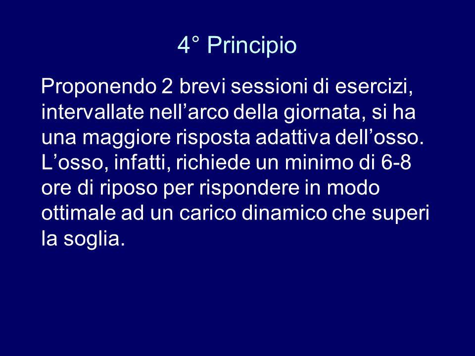 4° Principio