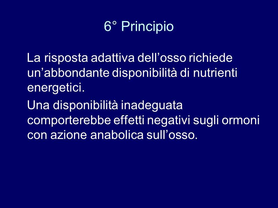 6° Principio La risposta adattiva dell'osso richiede un'abbondante disponibilità di nutrienti energetici.