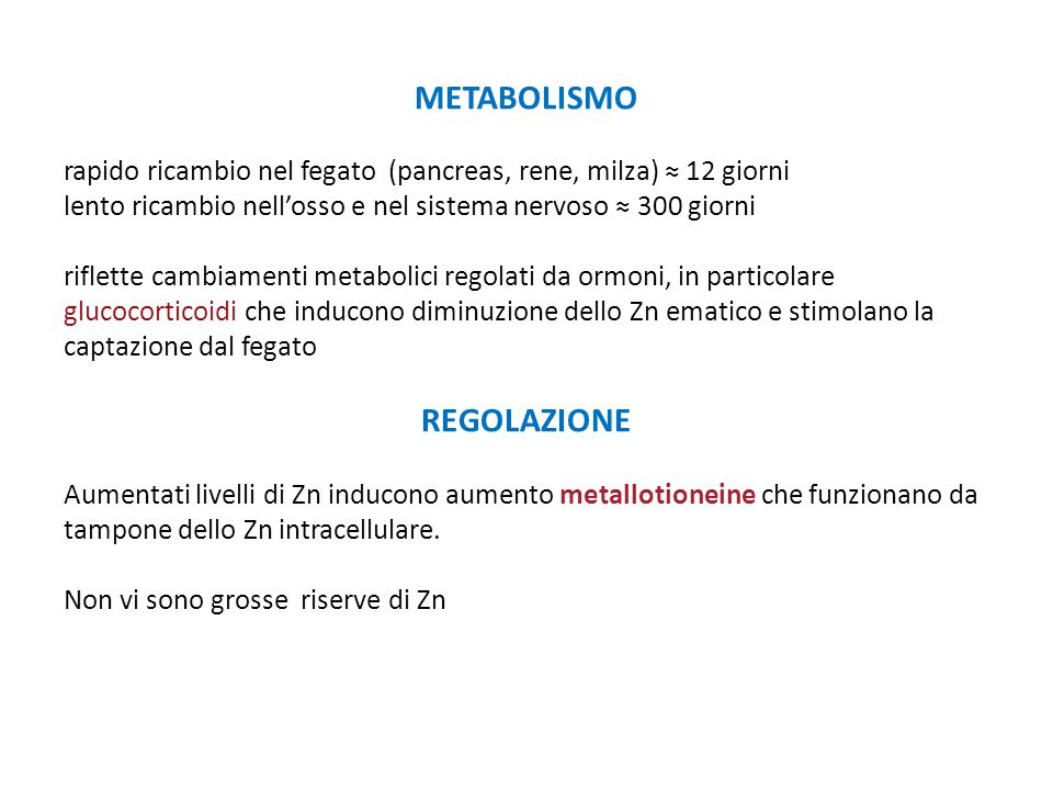 METABOLISMO REGOLAZIONE