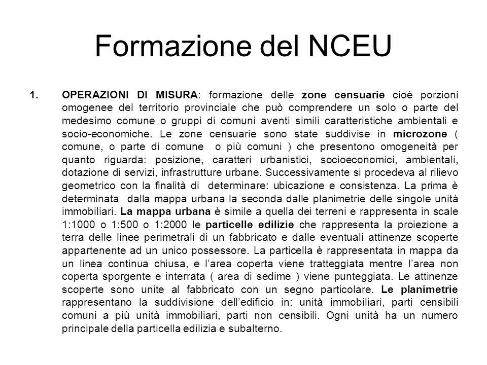 Formazione del NCEU