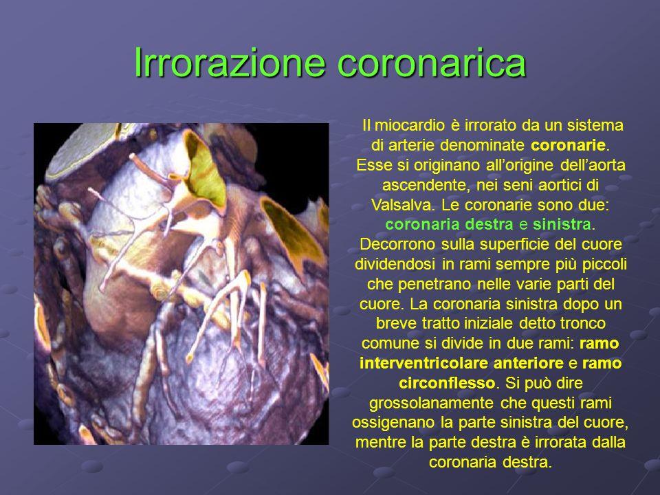 Irrorazione coronarica