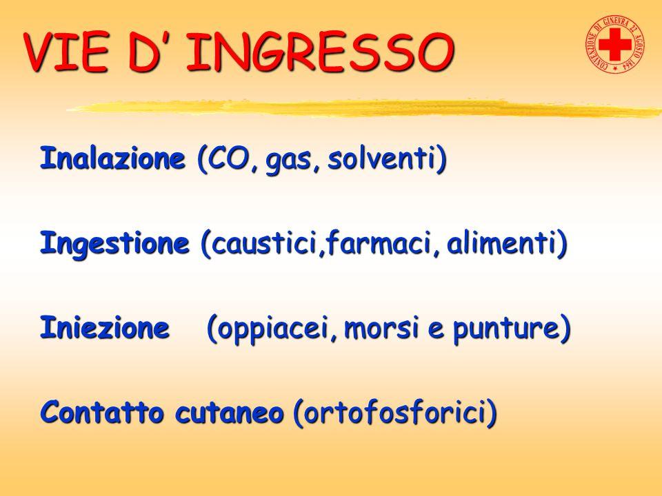 VIE D' INGRESSO Inalazione (CO, gas, solventi)