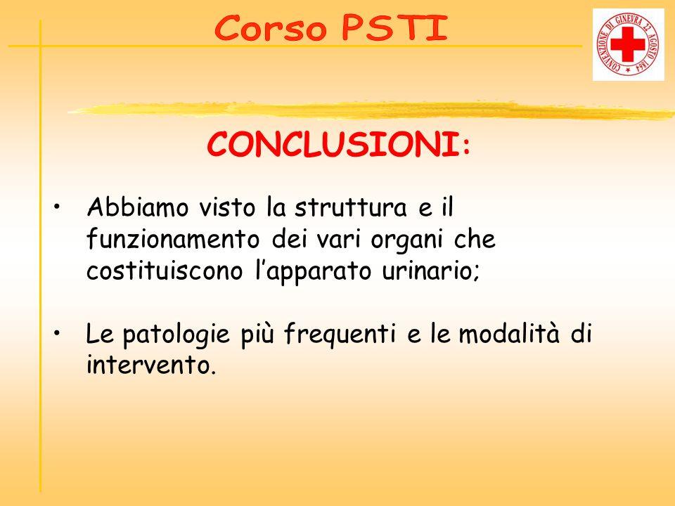 Corso PSTI CONCLUSIONI: Abbiamo visto la struttura e il funzionamento dei vari organi che costituiscono l'apparato urinario;