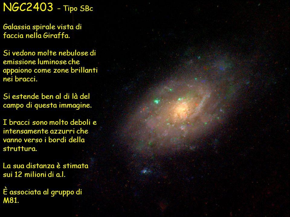 NGC2403 – Tipo SBc Galassia spirale vista di faccia nella Giraffa.