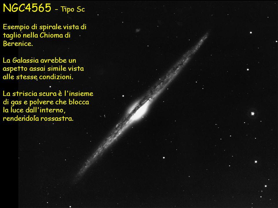 NGC4565 – Tipo Sc Esempio di spirale vista di taglio nella Chioma di Berenice.