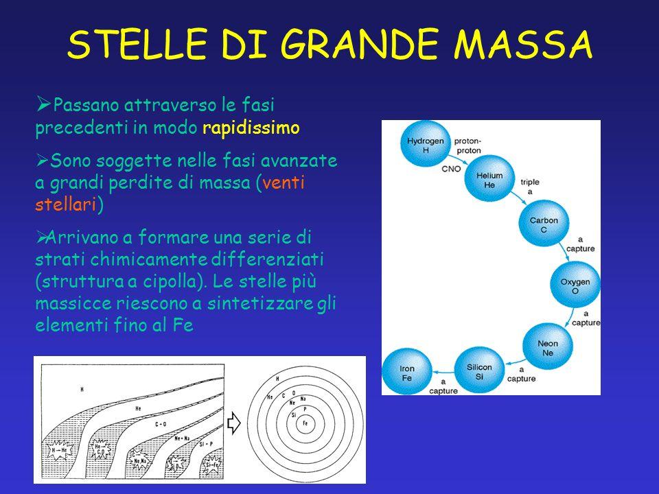 STELLE DI GRANDE MASSA Passano attraverso le fasi precedenti in modo rapidissimo.