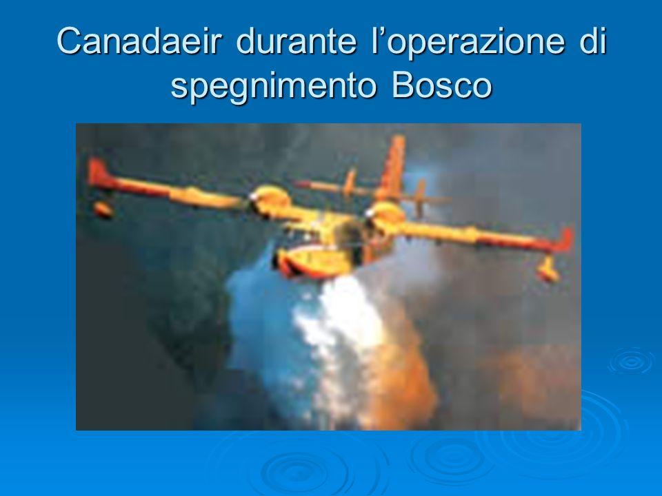 Canadaeir durante l'operazione di spegnimento Bosco