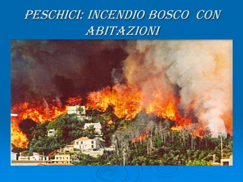 Peschici: Incendio Bosco con Abitazioni