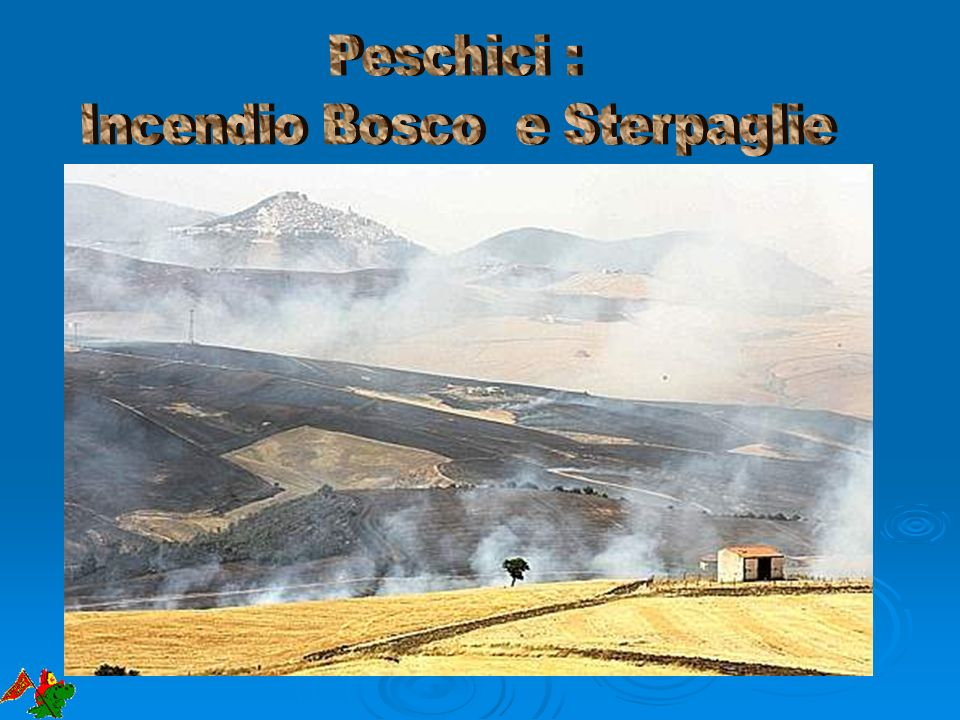 Incendio Bosco e Sterpaglie