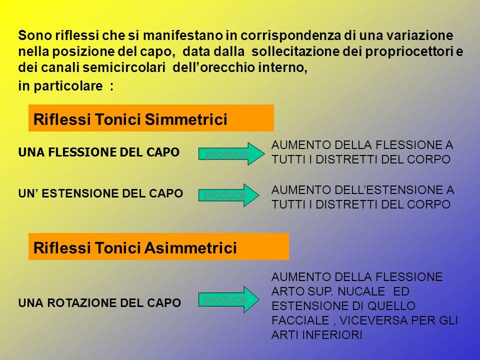 Riflessi Tonici Simmetrici
