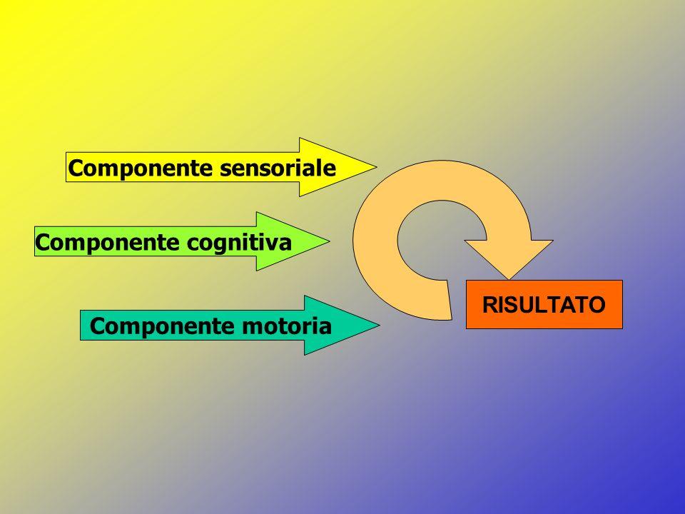 Componente sensoriale