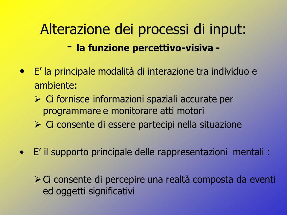 Alterazione dei processi di input: - la funzione percettivo-visiva -