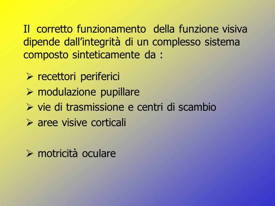 Il corretto funzionamento della funzione visiva dipende dall'integrità di un complesso sistema composto sinteticamente da :