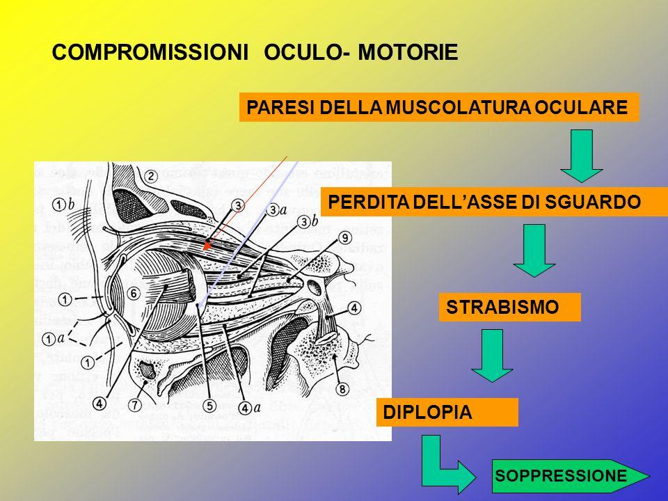 COMPROMISSIONI OCULO- MOTORIE