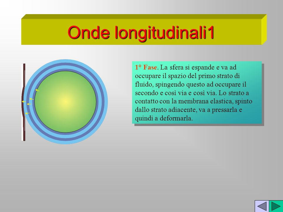 Onde longitudinali1