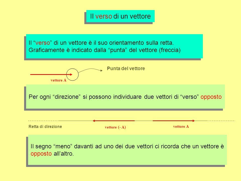 Il verso di un vettore Il verso di un vettore è il suo orientamento sulla retta. Graficamente è indicato dalla punta del vettore (freccia)