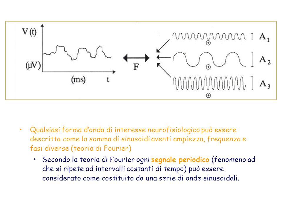 Qualsiasi forma d'onda di interesse neurofisiologico può essere descritta come la somma di sinusoidi aventi ampiezza, frequenza e fasi diverse (teoria di Fourier)