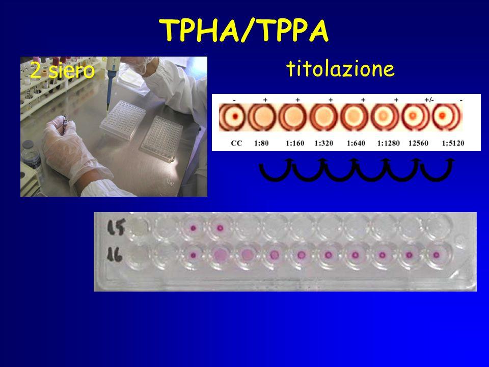 TPHA/TPPA 2 siero titolazione