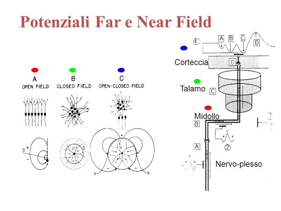 Potenziali Far e Near Field