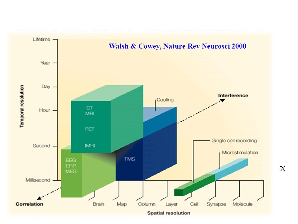 Walsh & Cowey, Nature Rev Neurosci 2000