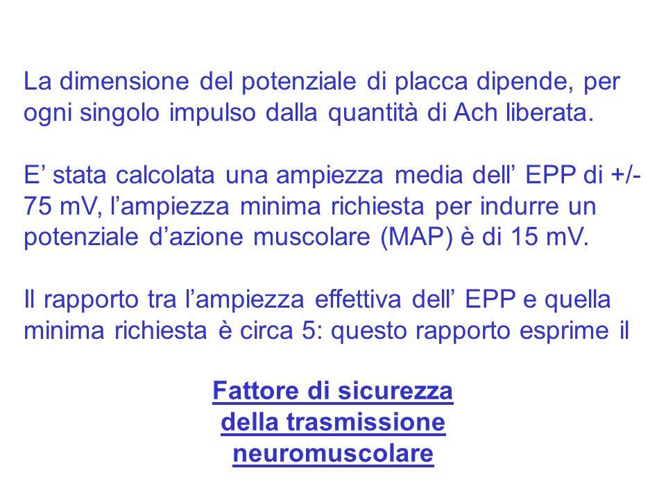 della trasmissione neuromuscolare