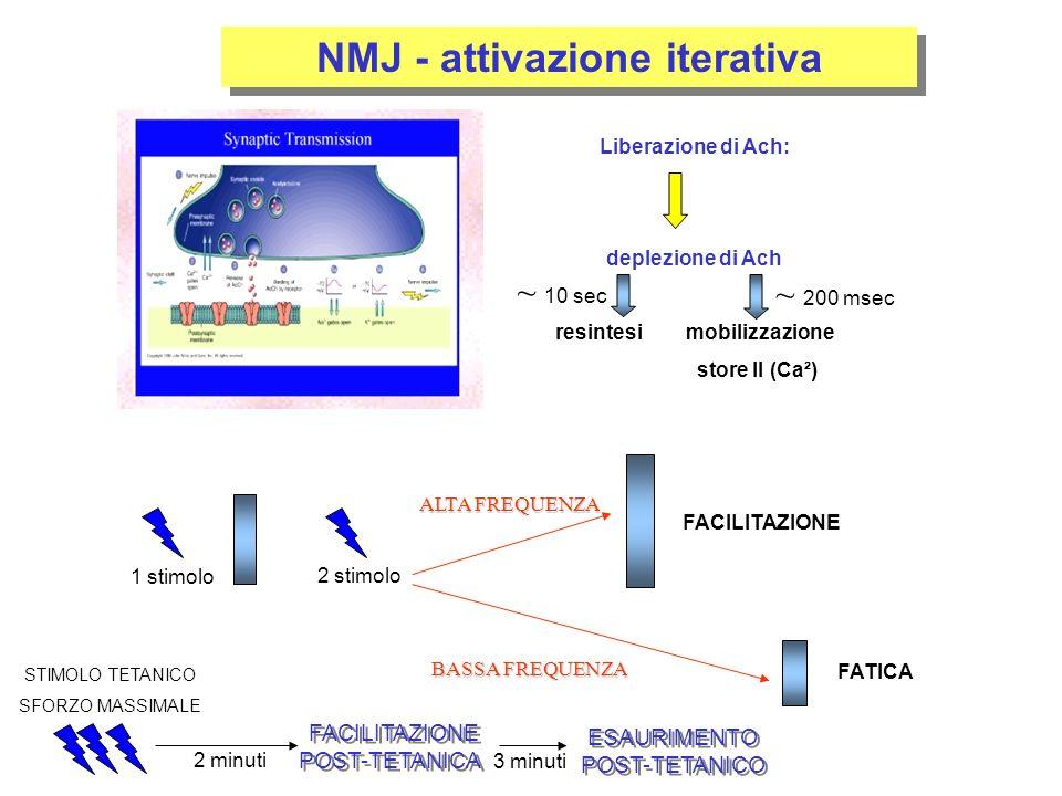 NMJ - attivazione iterativa