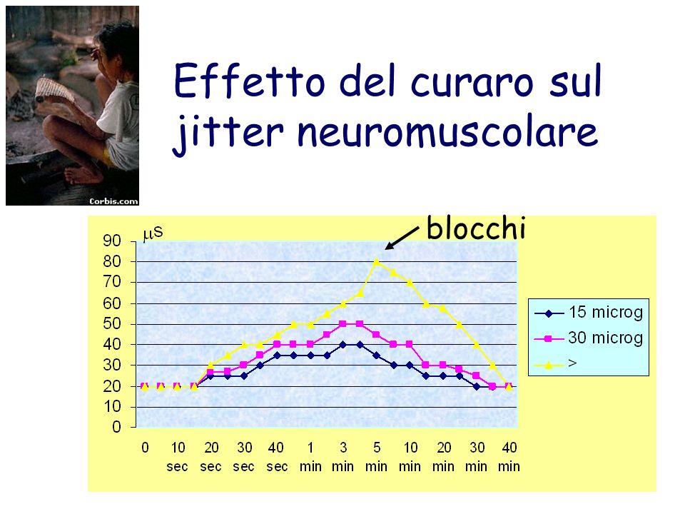 Effetto del curaro sul jitter neuromuscolare