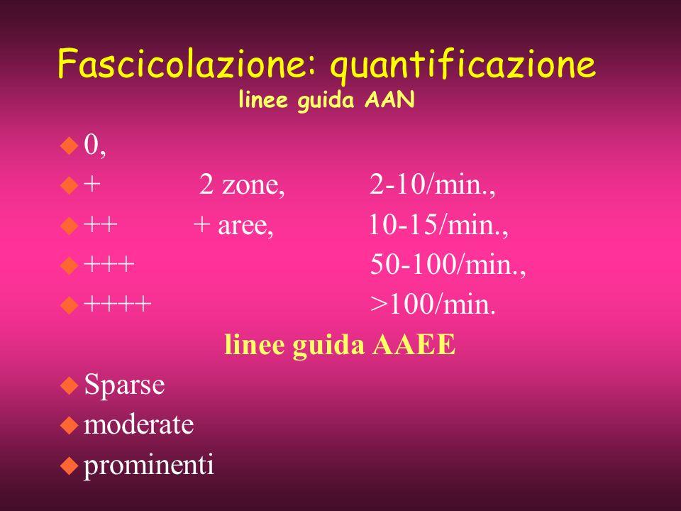 Fascicolazione: quantificazione linee guida AAN