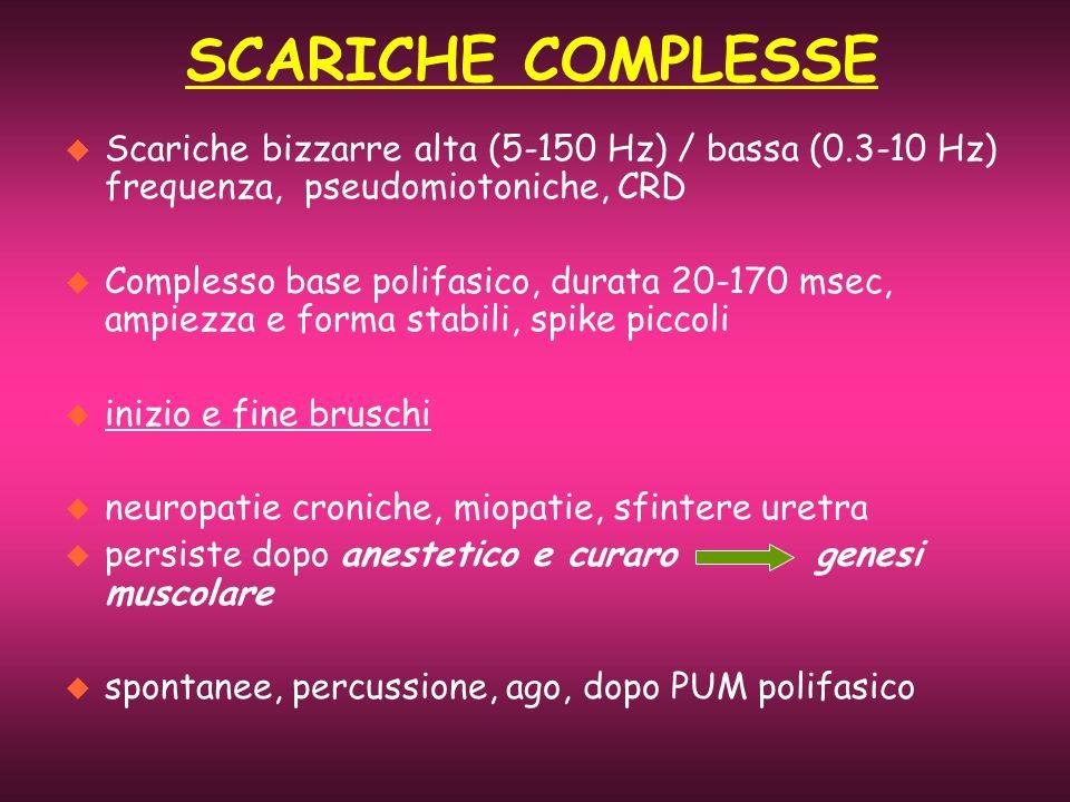 SCARICHE COMPLESSE Scariche bizzarre alta (5-150 Hz) / bassa (0.3-10 Hz) frequenza, pseudomiotoniche, CRD.