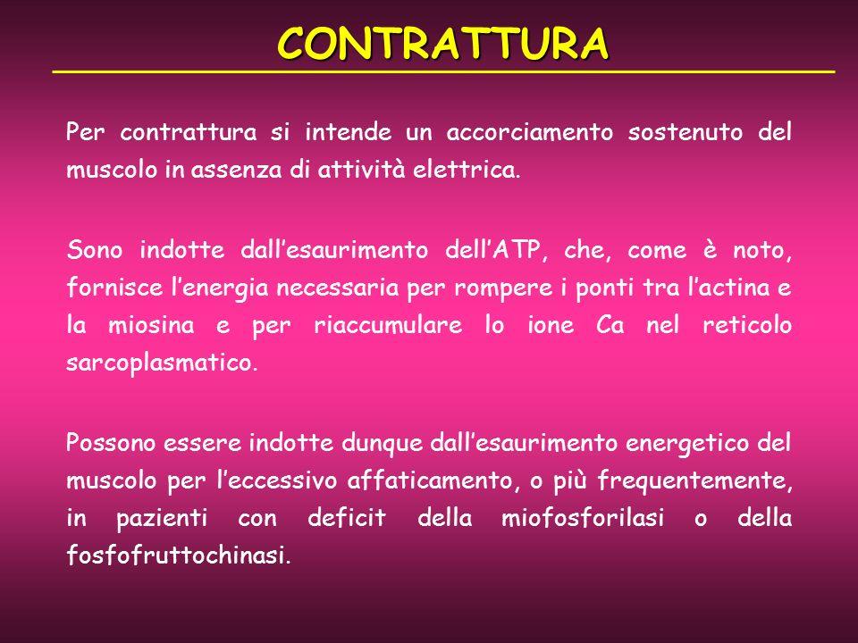 CONTRATTURA Per contrattura si intende un accorciamento sostenuto del muscolo in assenza di attività elettrica.