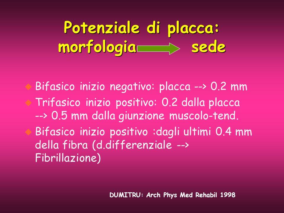 Potenziale di placca: morfologia sede