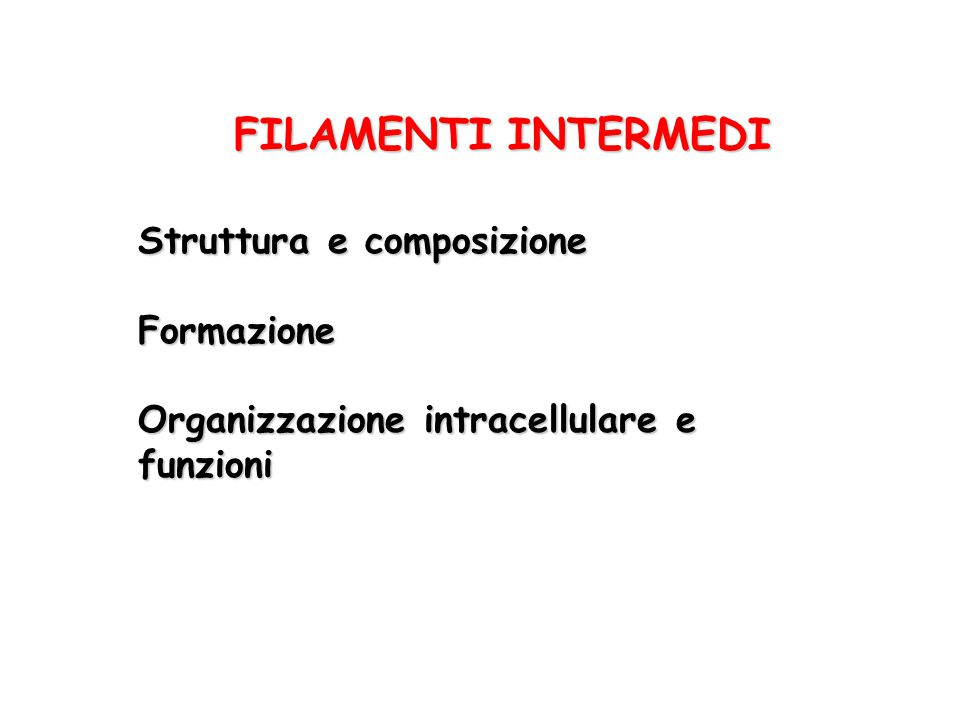 FILAMENTI INTERMEDI Struttura e composizione Formazione