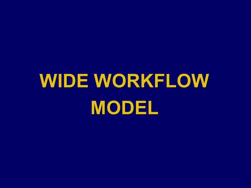 WIDE WORKFLOW MODEL
