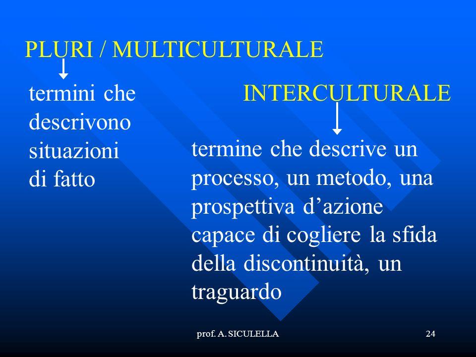 PLURI / MULTICULTURALE
