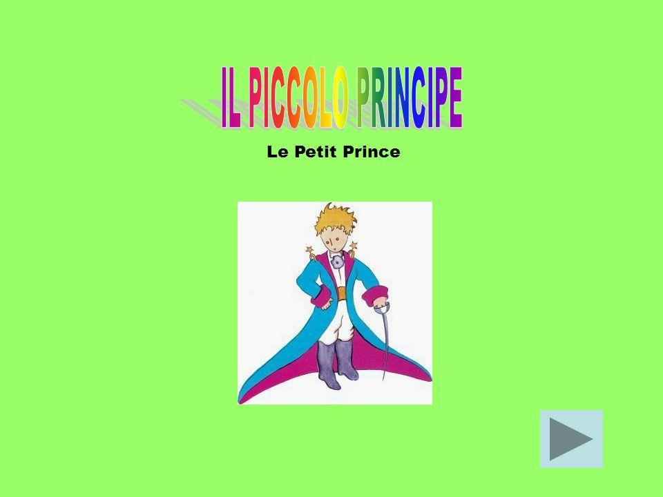 IL PICCOLO PRINCIPE Le Petit Prince