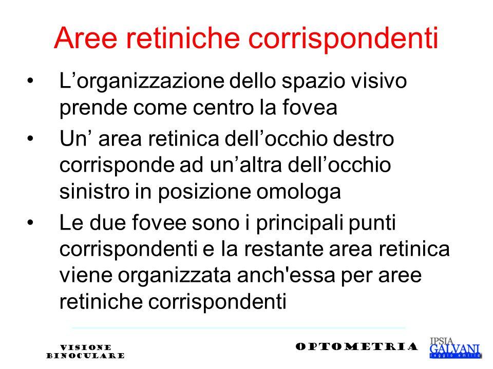 Aree retiniche corrispondenti