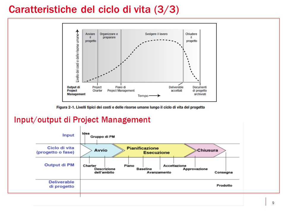 Input/output di Project Management