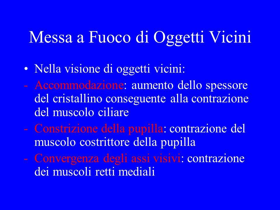 Messa a Fuoco di Oggetti Vicini