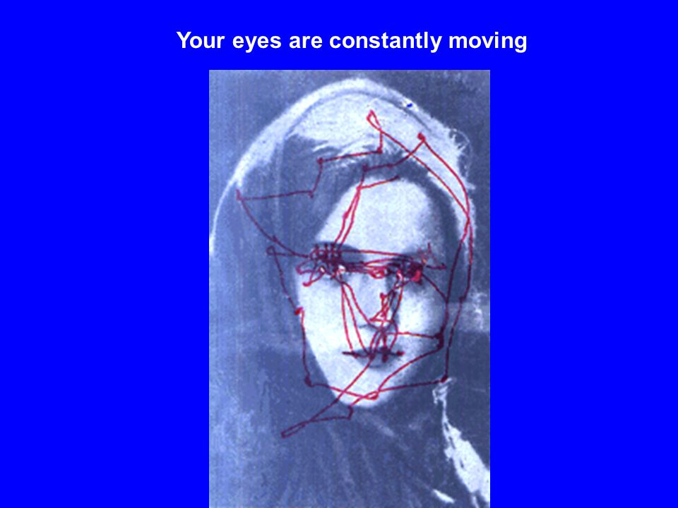 Your eyes are constantly moving