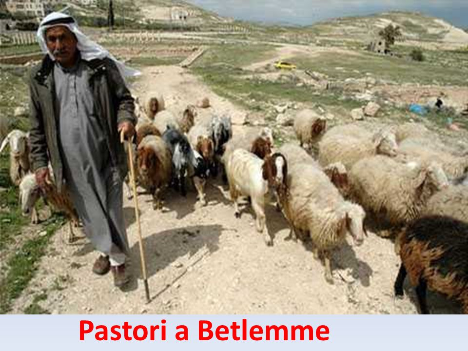 Pastori a Betlemme