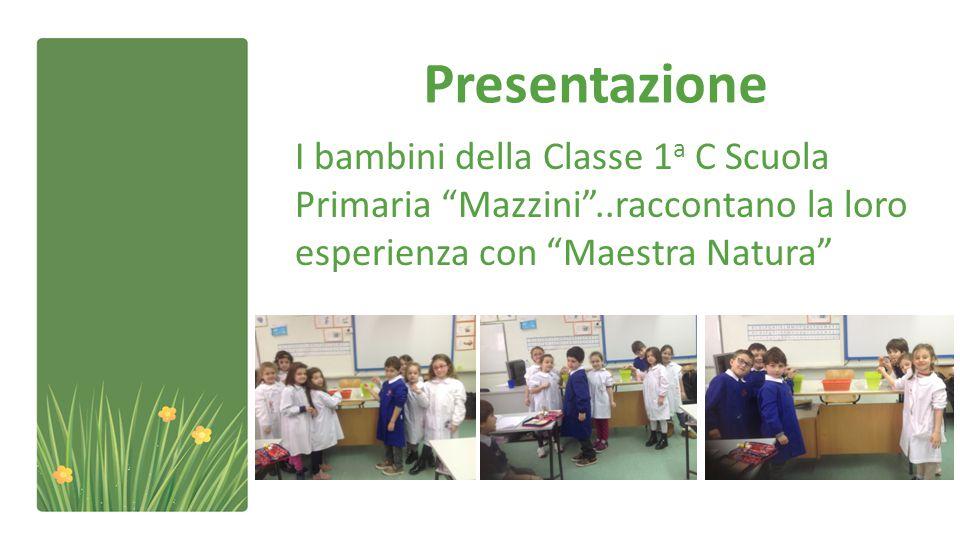 Presentazione I bambini della Classe 1a C Scuola Primaria Mazzini ..raccontano la loro esperienza con Maestra Natura