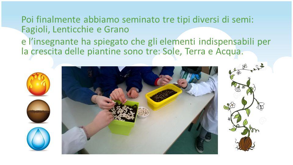 Poi finalmente abbiamo seminato tre tipi diversi di semi: Fagioli, Lenticchie e Grano e l'insegnante ha spiegato che gli elementi indispensabili per la crescita delle piantine sono tre: Sole, Terra e Acqua.