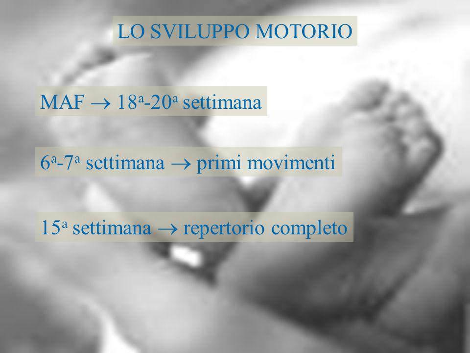 LO SVILUPPO MOTORIO MAF  18a-20a settimana. 6a-7a settimana  primi movimenti.