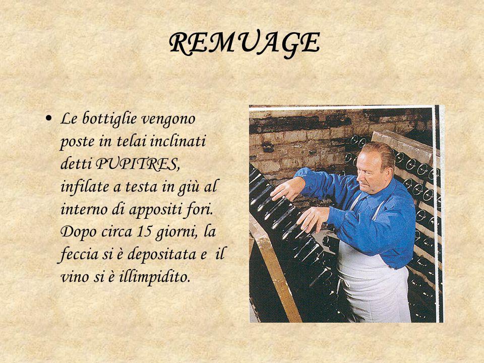 REMUAGE