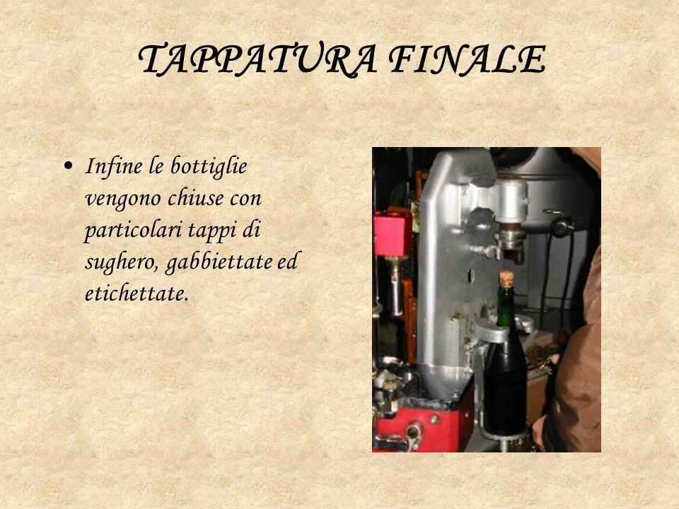 TAPPATURA FINALE Infine le bottiglie vengono chiuse con particolari tappi di sughero, gabbiettate ed etichettate.