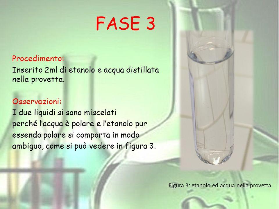 FASE 3